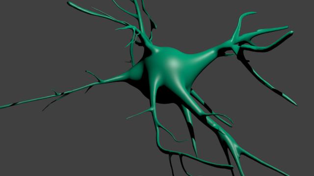 neuron.sculpt.png