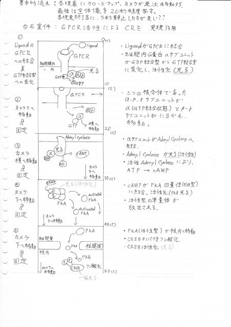 s_0001 (3).jpg